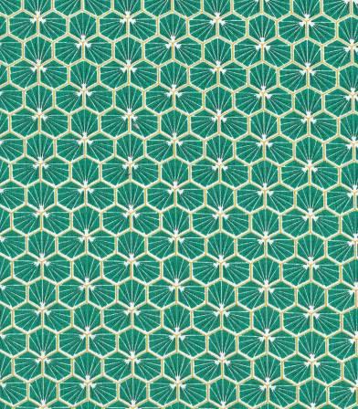 Tissu enduit - Riad Green