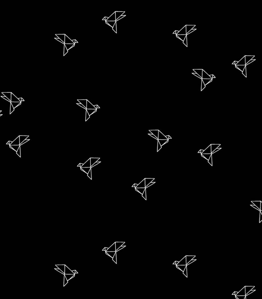 Tissu Bye-bye birdie black