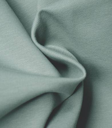 Tissu bio Jersey - Dusty green